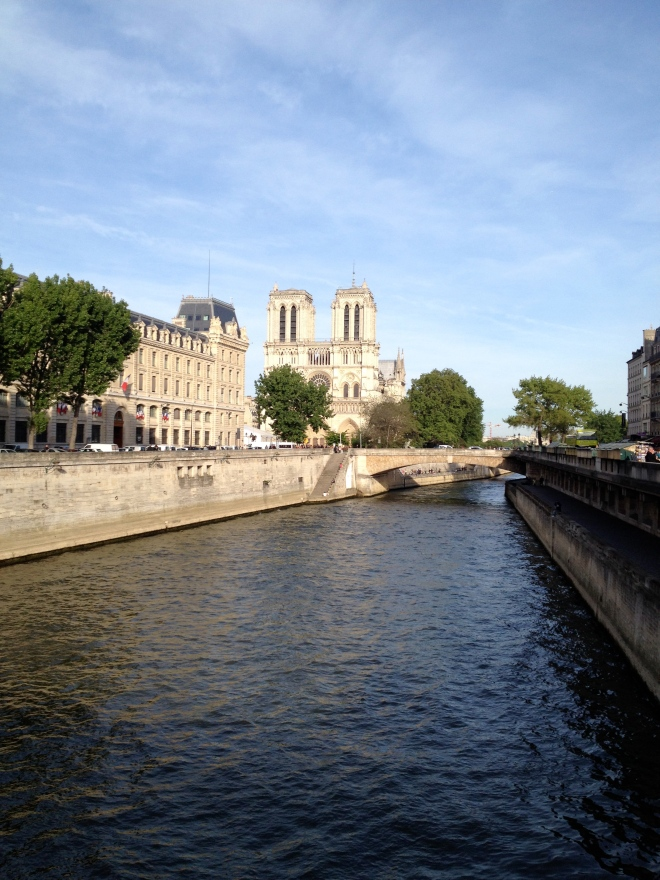 Notre Dame Cathedral Paris France Seine River