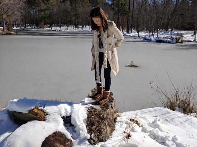 Sunny Frozen Pond, North Carolina